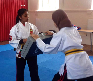 MSA Karate Events